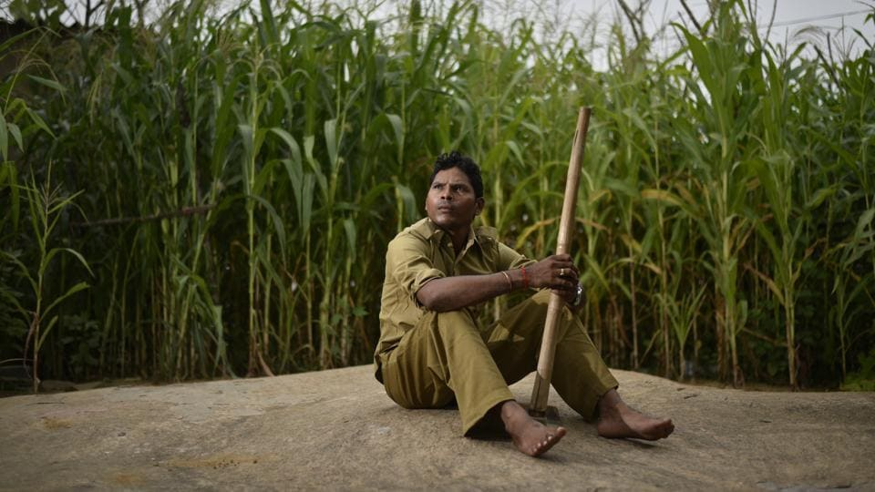 In 2005, when Salwa Judum – a government sponsored vigilante movement to fight Maoists  was active, it mobilised 6,000 tribal youth in Chhattisgarh's Maoist-affected districts to work as special police officers (SPOs). Abandoned by the state, they are now staring at a bleak future. In 2011, when the Supreme Court banned Judum and ordered the state government to stop using SPOs in counter-insurgency operations, more than half of the SPOs were absorbed as assistant constables.  (Ravi Choudhary/HT PHOTO)