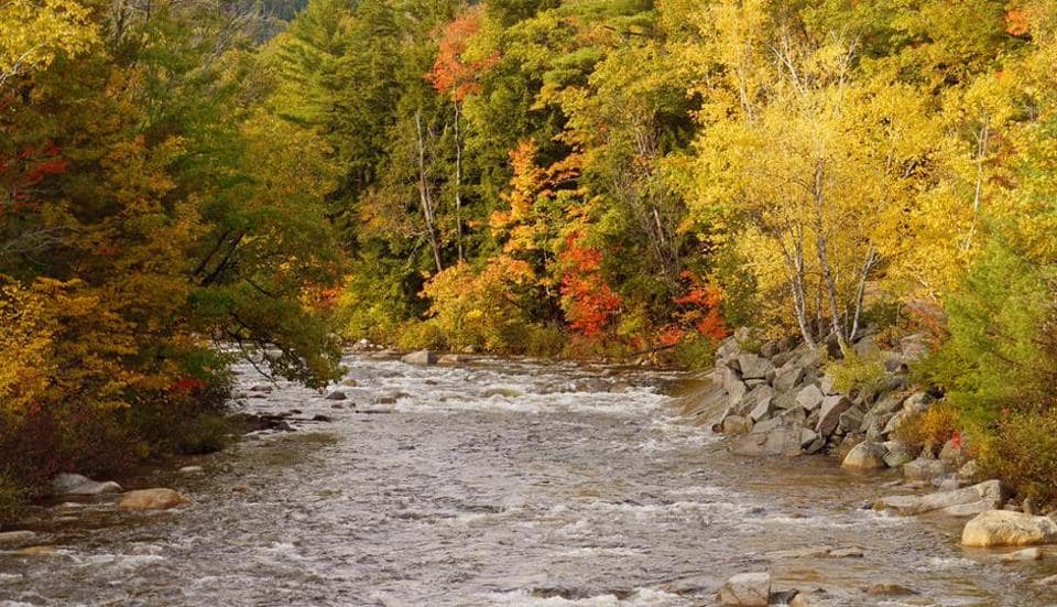 New Hampshire is known for its rock ledges and autumn foliage.
