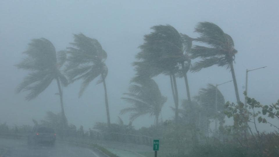 Palm trees bend in the wind as Hurricane Irma slammed across islands in the northern Caribbean on Wednesday, in San Juan, Puerto Rico.