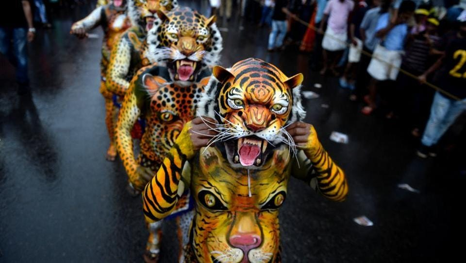 During Onam festival Indian performers painted as tigers take part in the 'Pulikali', or Tiger dance, in Thrissur on Thursday.  (AFP)