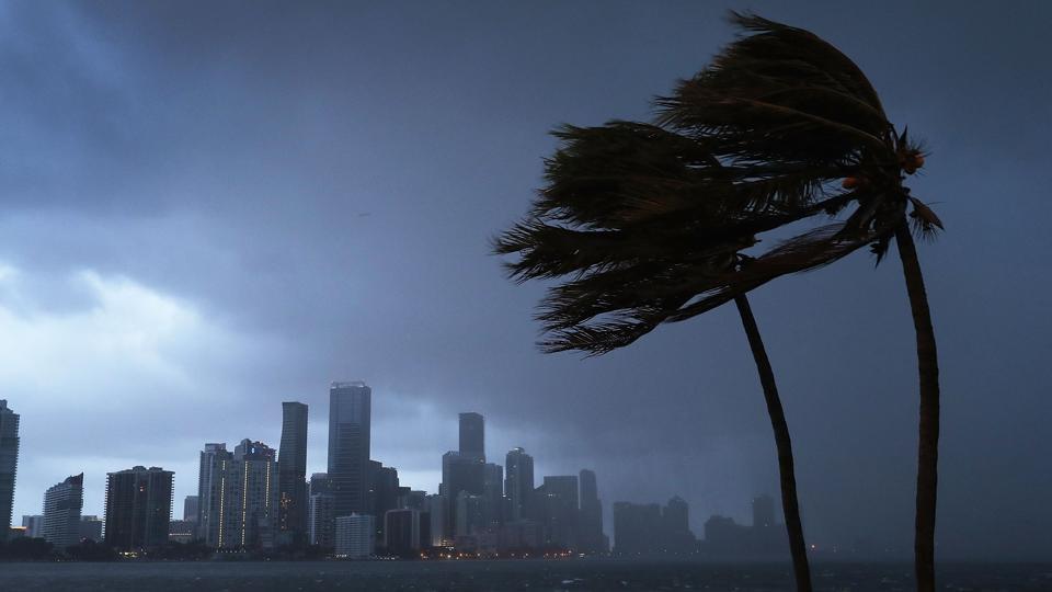 Hurricane Irma,Indians affected by Hurricane Irma,Indian diaspora