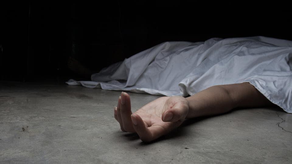 Delhi,Road Accident,Woman dies