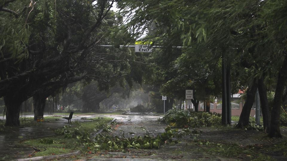 Trees and branches are seen after being knocked down by the high winds as hurricane Irma arrives in Miami, Florida.