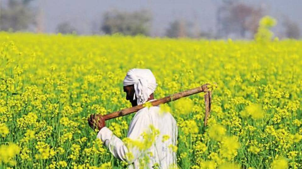 The Punjab government had promised total waiver of entire crop loans up to Rs 2 lakh for small and marginal farmers (up to 5 acres), and a flat Rs 2 lakh relief for all other marginal farmers.