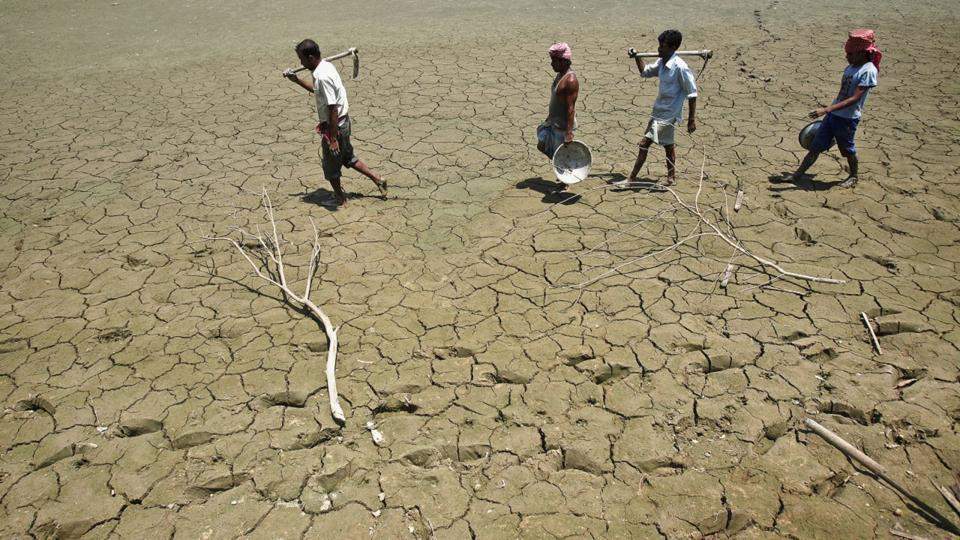 Labourers walk through parched land in Tripura. India's most important food crop producing states are staring at a drought-like situation.