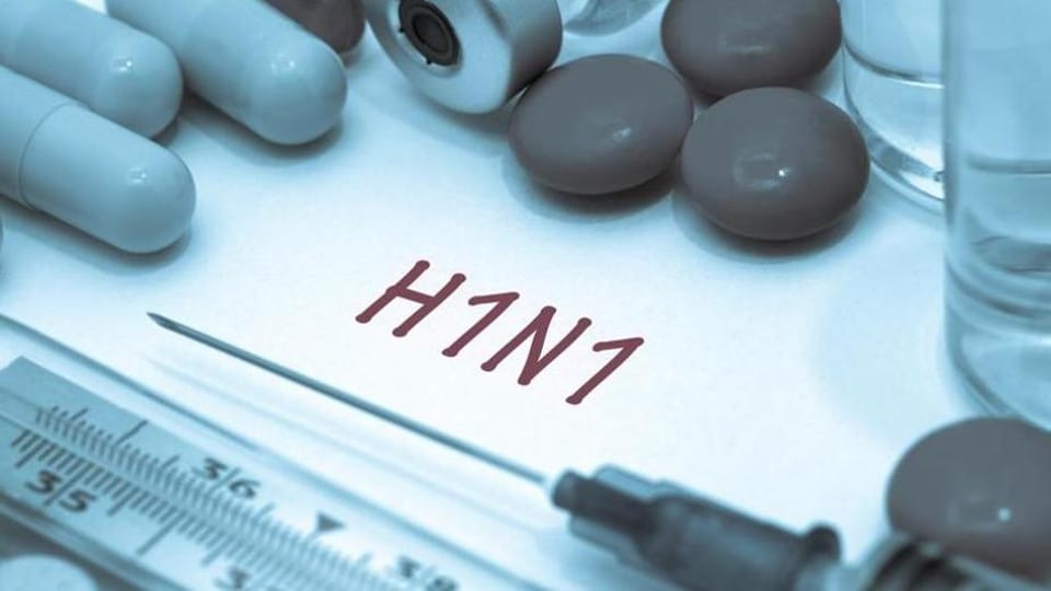 Swine flu,Punjab news,Ludhiana news