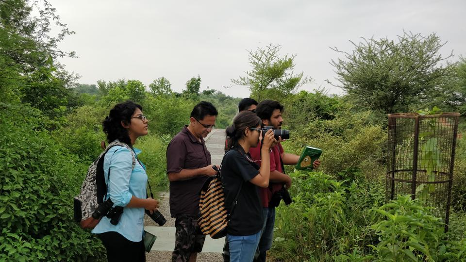 Equipped with binoculars, cameras, special lenses and a checklist of butterflies, enthusiasts scouted the green patches of the city to record data on butterflies and their habitats.