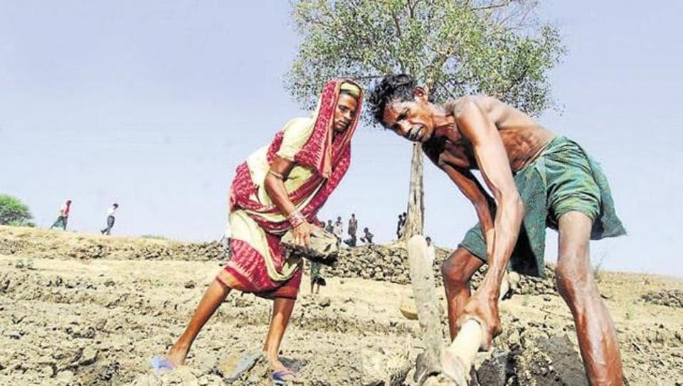 farm loans,farmer suicides,Punjab