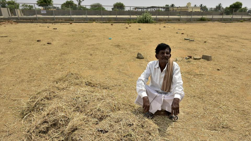 A farmer waits at the empty fodder bank at Vemagallu of Kolar near Bengaluru. The IMD simply needs to get its spatial forecasts of rainfall better if we are to be better prepared for future droughts and floods