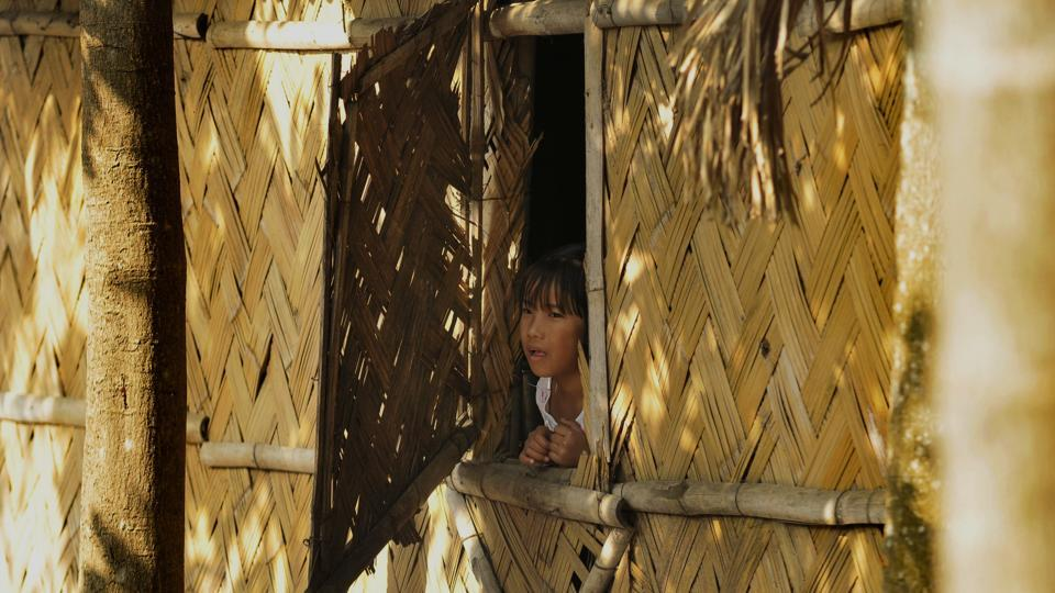 A girl looks outside her house made of bamboo which is a popular building material in Assam. In India, bamboo is intimately connected to the lives of the people, especially in the villages. Bamboo bridges are a common sight in Assam, and the plant is also an important part of the cuisine in India, especially in the North Eastern states.  (Burhaan Kinu / HT Photo)