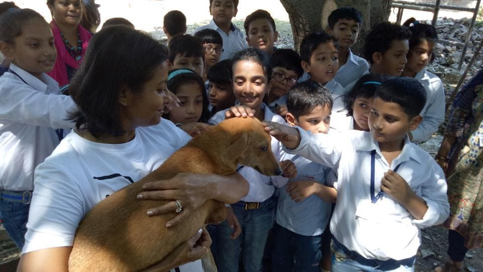 Lucknow Animal Welfare Forum,LAWF,Appeal to citizens