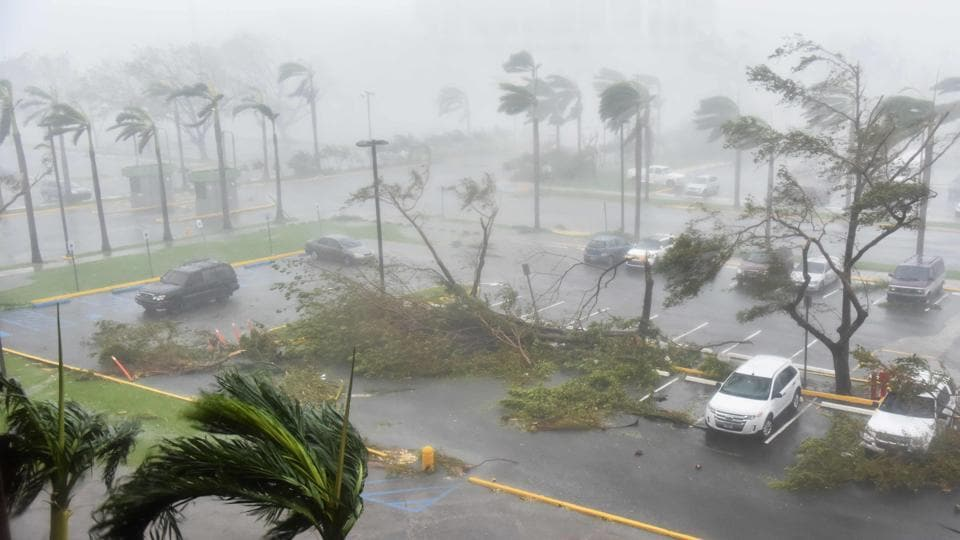 Trees are toppled in a parking lot at Roberto Clemente Coliseum in San Juan, Puerto Rico, on September 20, 2017, during the passage of the Hurricane Maria.