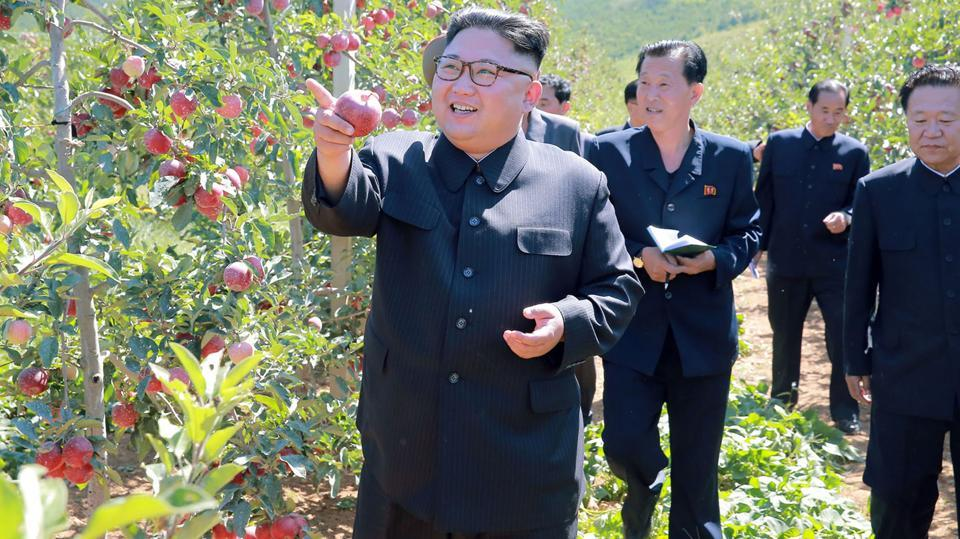 This undated picture released from North Korea's official Korean Central News Agency on Thursday shows North Korean leader Kim Jong-Un visiting a fruit farm at Kwail County, South Hwanghae Province.