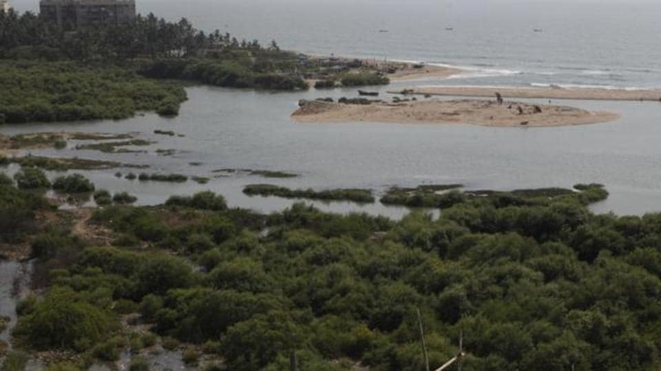 Officials from INS Hamla refuted the allegations and said no mangroves had been destroyed by them.