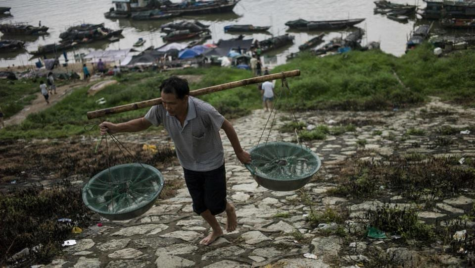 Some people from the Tanka community carry nets filled with fish to sell in the near by markets. The Tanka population in the southern Chinese coast used to be significant until the 1950s. As time passed, the local population shrinked. (Fred Dufour / AFP)