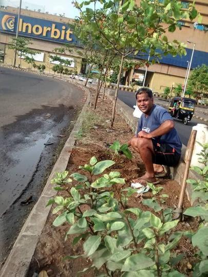 Chavan plants a sapling.