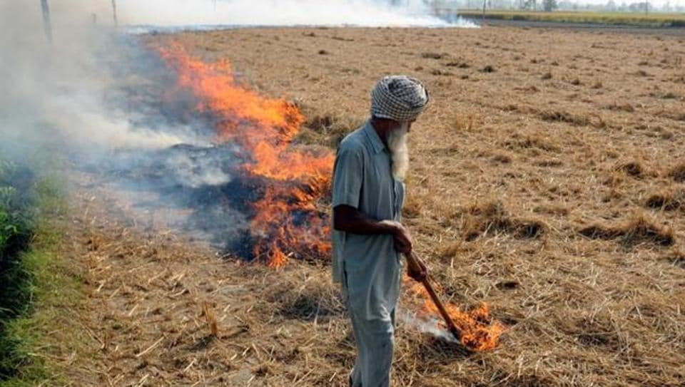 paddy stubble,stubble burning,high cost