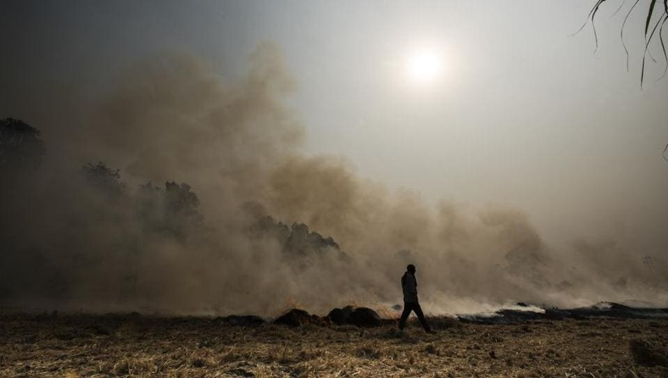 Crop burning,pollution,pollution in Delhi