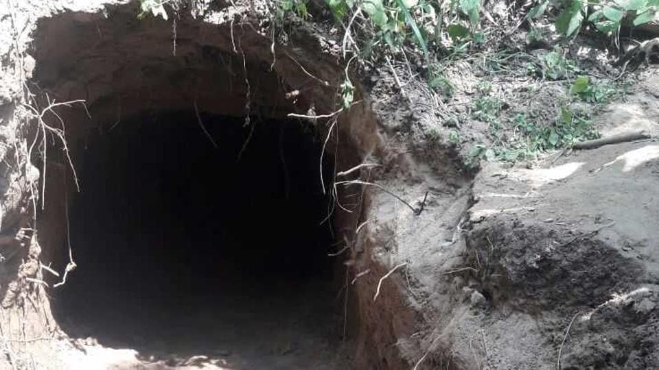 The tunnel was discovered during sanitisation operation along the international border between Arnia sub-sector of RS Pura sector in Jammu district.