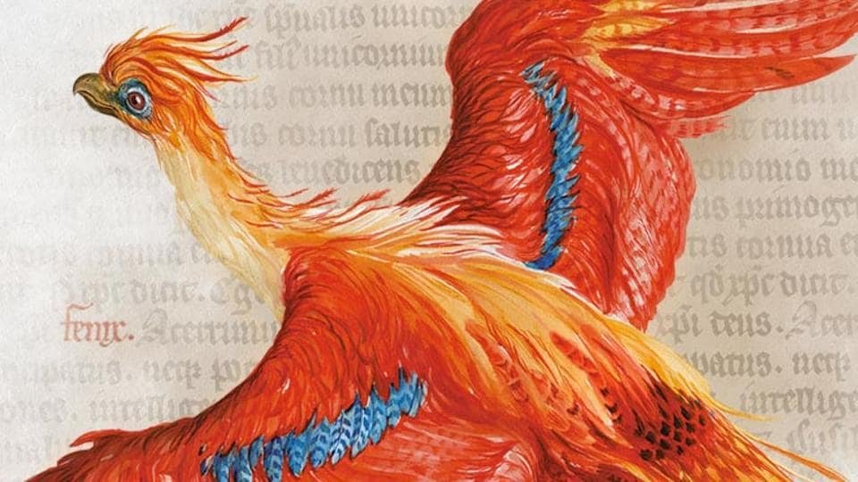 Harry Potter at 20,JK Rowling,Harry Potter: A History of Magic