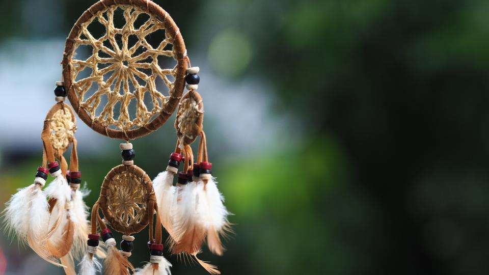 A dreamcatcher.  Researchers detailed the various factors that cause rapid eye movement (REM) sleep and dream loss.