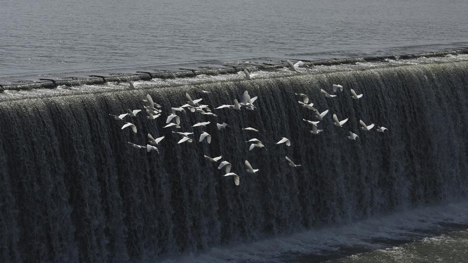 Migratory birds fly over the Gangau Dam and Reservoir on Ken river in Panna National Park in Chhattarpur district, Madhya Pradesh. A MoU was signed in 2005 between the Centre and the two states (MP and UP)  to start work on the project.  (Vipin Kumar / HT PHOTO)