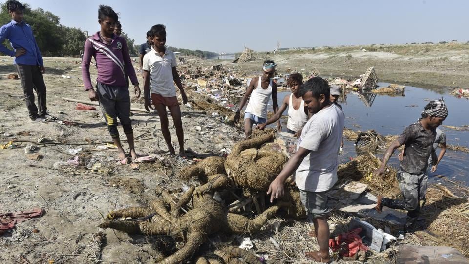 Workers of flood control departement take out Durga idols from Yamuna after immersions on Vijay Dashmi.