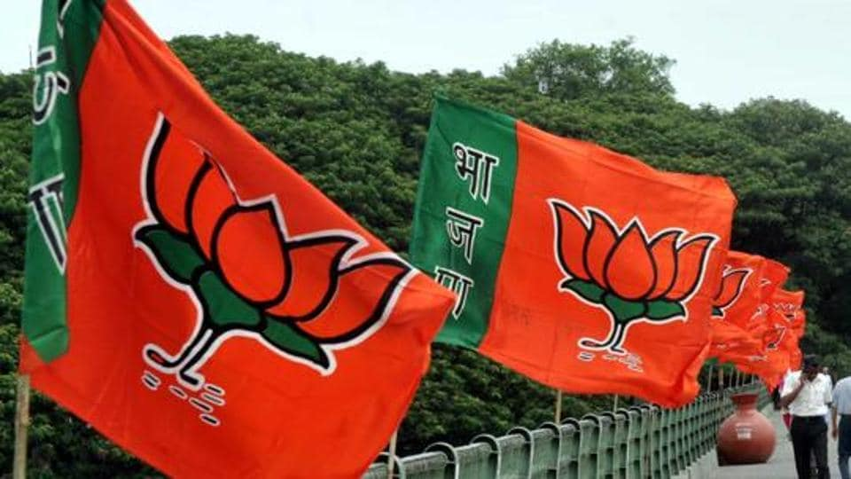 BJP party flags along a road in Pune.