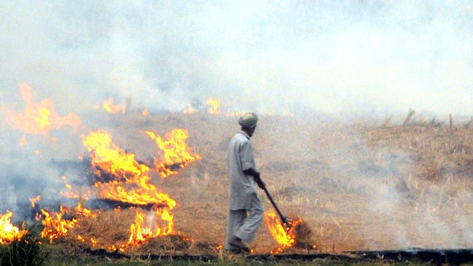 Representatives of farmer unions collectively set fire paddy straw in a 25-acre field at Shajju Bhatt village in Nabha to send across a message of defiance on Tuesday.