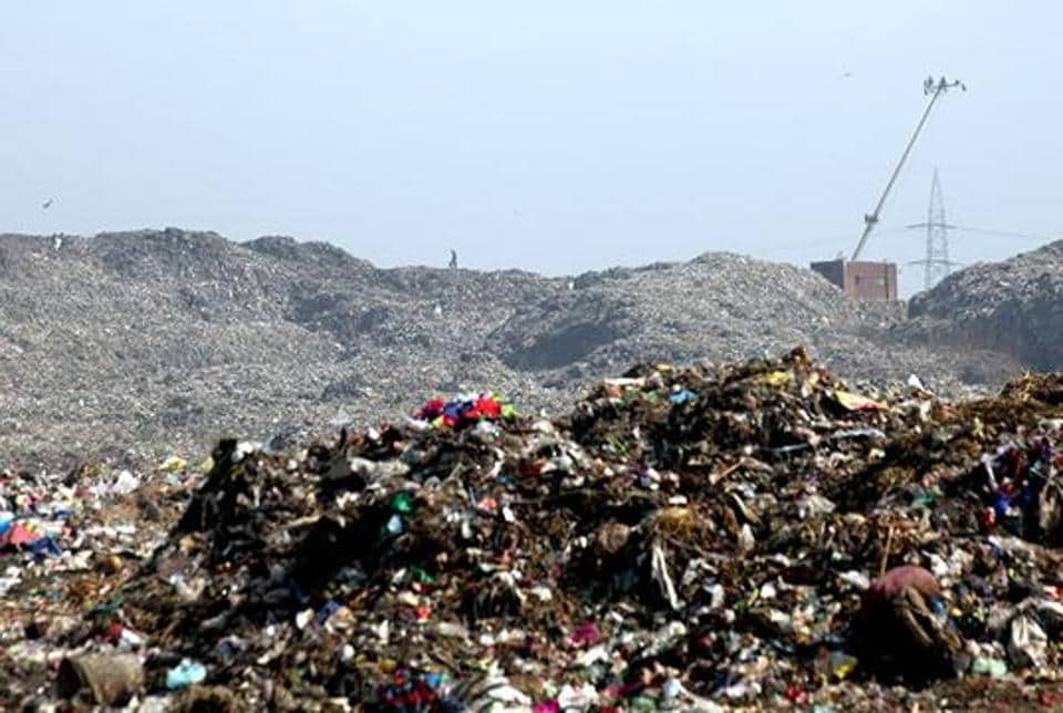 Earlier this year, the BMC issued a Letter of Intent to the contractor to start the process of land reclamation at the Mulund dumpyard, which is spread over 24 hectares.