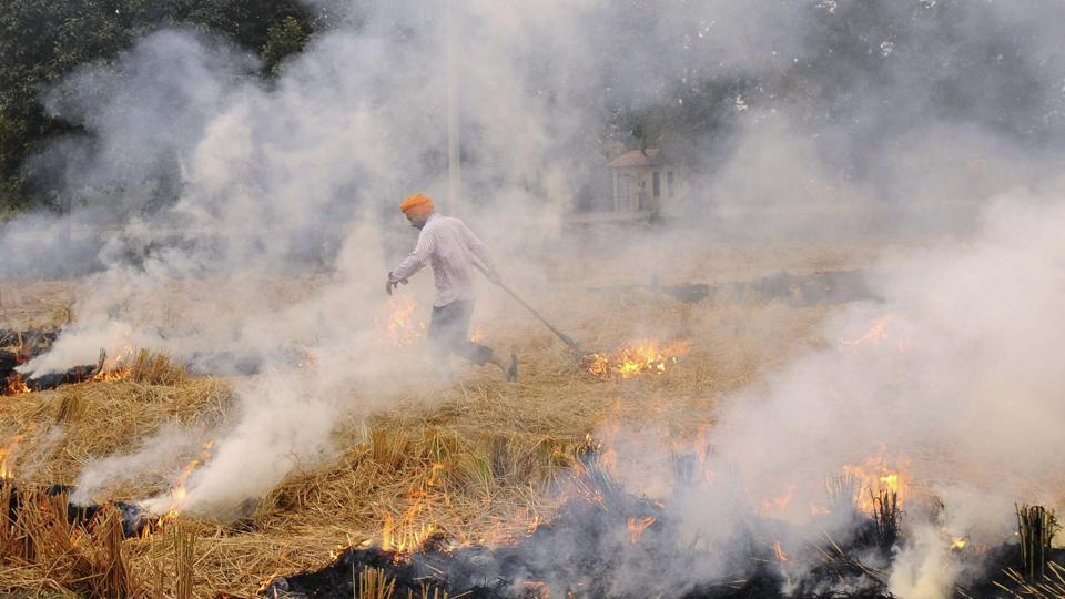 Despite the ban, a farmer burns paddy straw in a field near the National Highway-64, at Kauli village, in Patiala, Punjab. A study by IIT Kanpur has listed stubble burning as the third biggest  contributor of pollution to Delhi air.