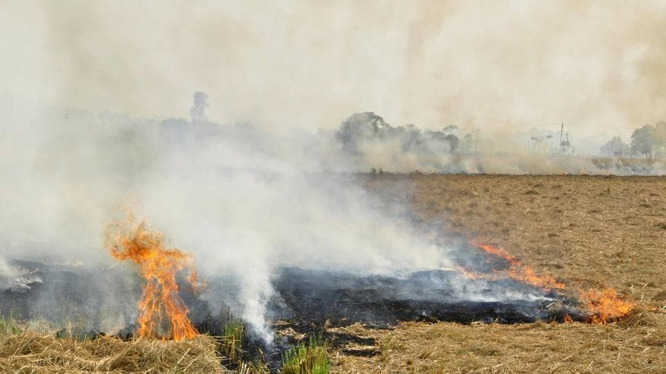 Farmers who burn paddy stubble are liable to booked under Section 188 (disobedience to order duly promulgated by a public servant) of the Indian Penal Code.