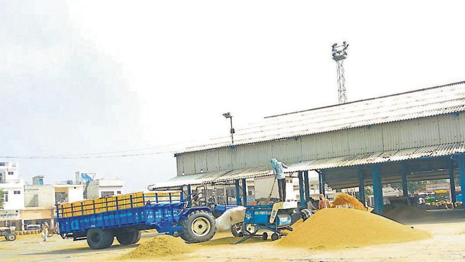 The Rajasthan government has capped the  MSP of pulses and other farm produce at the purchase centres at the state agriculture mandis.