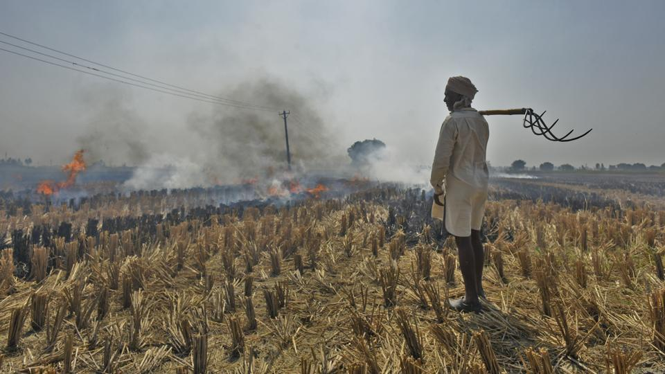 Winter's coming and Delhi's annual nightmare is already taking shape beyond its borders as cases of crop burning are being reported from Haryana and officials fear the number will rise drastically in the coming days. This, in turn, will trigger heavy pollution in the national capital region.  (Burhaan Kinu / HT PHOTO)