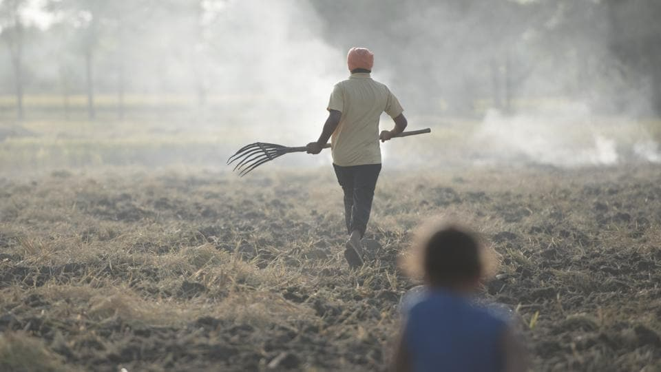 Stubble burning is a deliberate setting fire of the straw stubble that is residual after the harvesting of wheat and other grains.  (Sanchit Khanna / HT PHOTO)