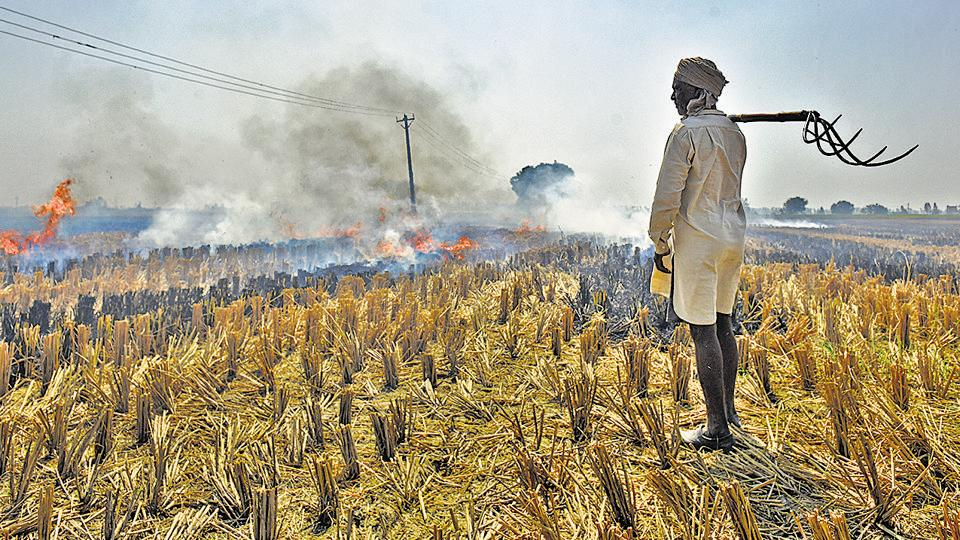 Delhi's annual pollution nightmare is already taking shape beyond its borders as cases of crop stubble burning are being reported from Haryana and Punjab.