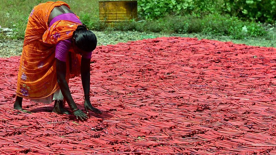 A woman employee drying up crackers at a factory in Sivakasi district in Tamil Nadu. The firecrackers business may be hit by crores due the ban on its sale in Delhi National Capital Region till October 31.