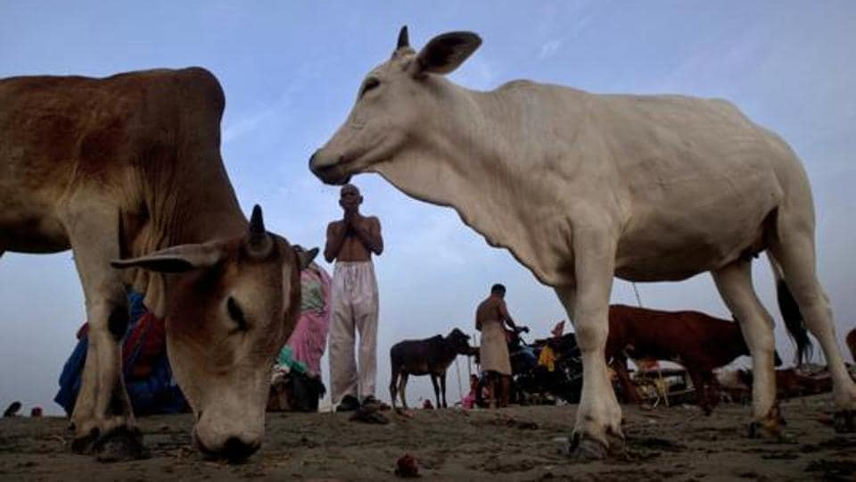 Police said the traders brought about 80 kgs of beef in their van from a village in neighbouring Odisha to allegedly sell it in the bordering villages.