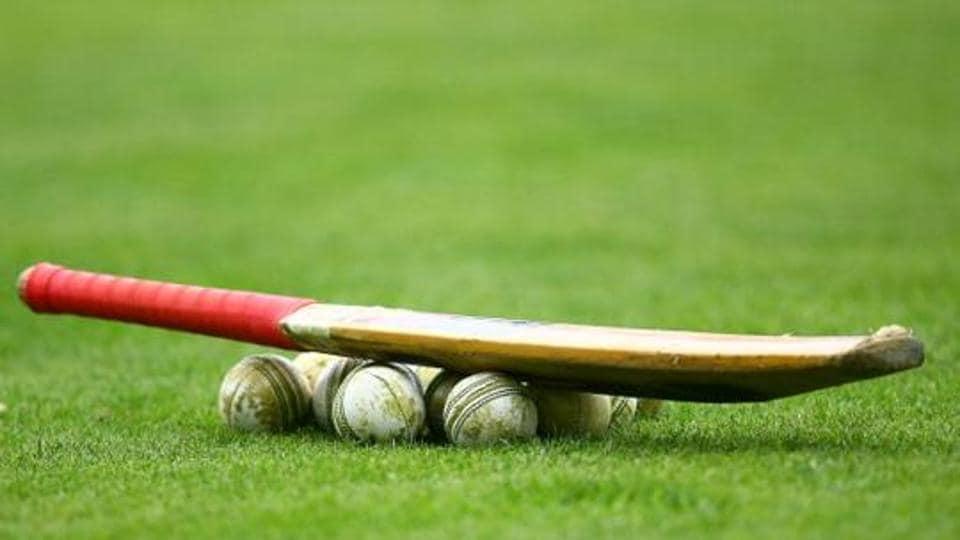 Cricket,France,Saint-Omer