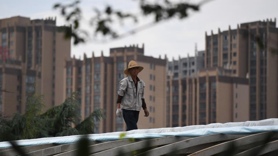 Archaeologists,Archaeology,Chongqing