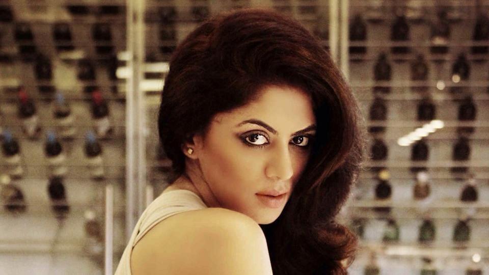 Kavita Kaushik,Television,FIR