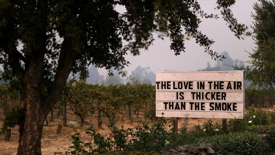 A sign is posted outside Cline Cellars on October 13, 2017 in Sonoma, California.  (AFP Photo)
