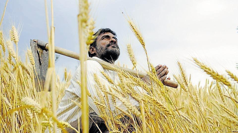 Mumbai,Maharashtra farmers,Maharashtra farm loan waiver