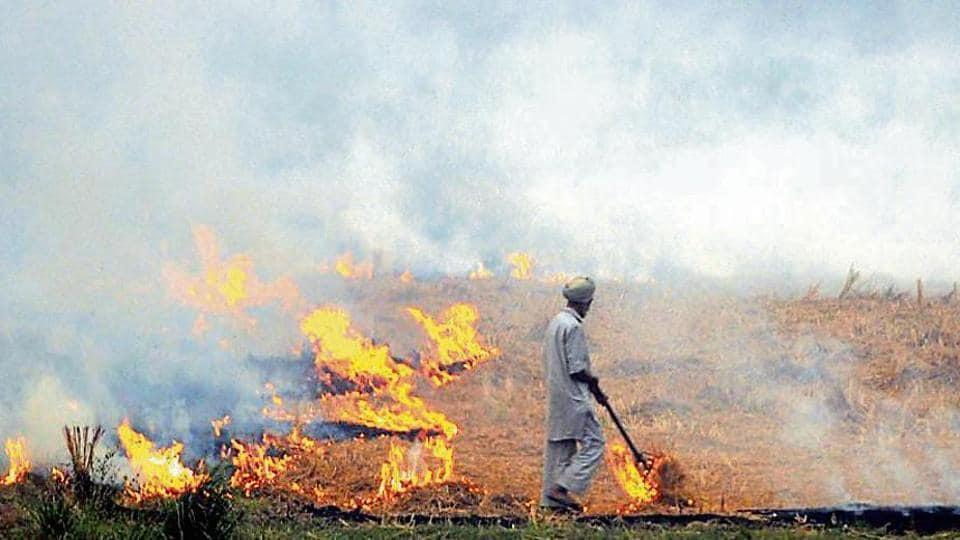 six farmers booked,FIR in Punjab,burning stubble