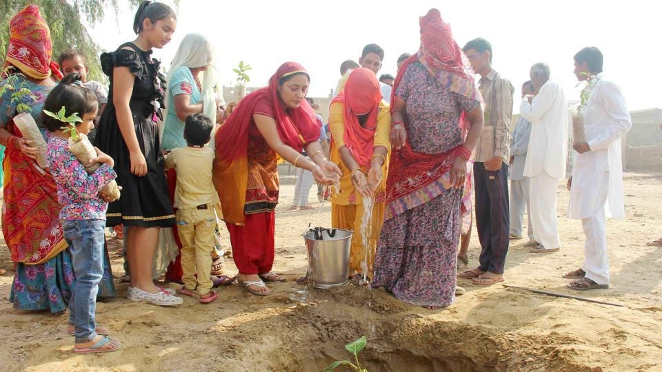 The villagers of 12 TK in Raisinghnagar will plant trees to celebrate green Diwali.