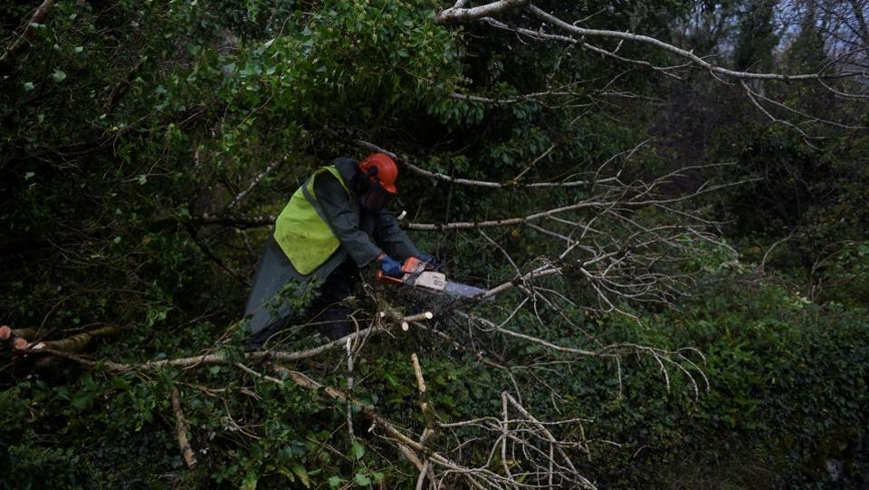 A worker clears fallen trees off a road with a chainsaw during Storm Ophelia in the County Clare area of the Burren, Ireland. 'There are still dangers out there but the cleanup has started in some areas and the job of getting the country back to work has begun,' the chairman of Ireland's National Emergency Coordination Group said. (Clodagh Kilcoyne / REUTERS)