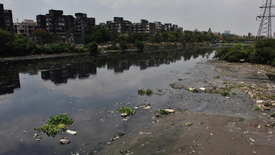 The 15-km Mithi River starts from Powai, courses through Kurla, Saki Naka, Kalina and Vakola and meets the Arabian Sea at Mahim creek.