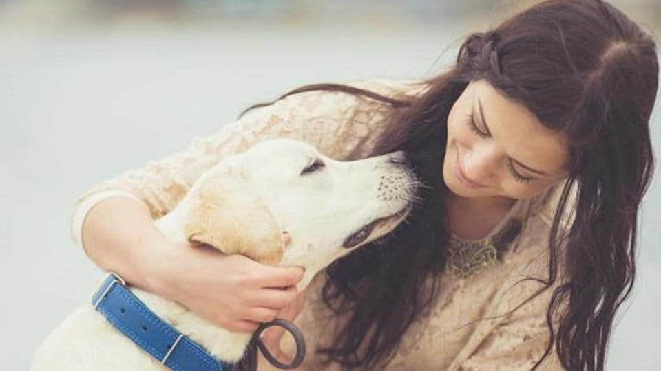 """The team discovered that dogs """"move their faces"""" more when humans were paying attention to them."""