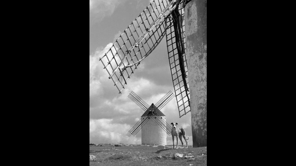 On his return to Spain in the late 1950s, Suárez visited La Mancha, photographing windmills and white buildings in his trademark formalist style, using strong sunlight.  (José Suárez)
