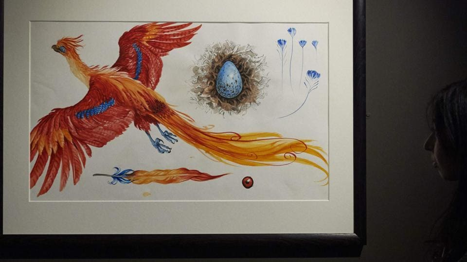 An illustration of Fawkes the Phoenix during a preview of Harry Potter: A History of Magic exhibition at the British Library, in central London on October 18, 2017.